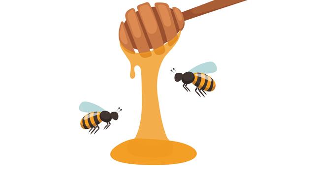 20161025 Honeypot